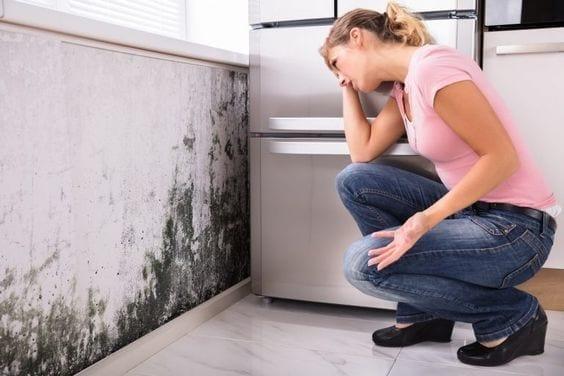 Tips para evitar humedad en las paredes de tu casa