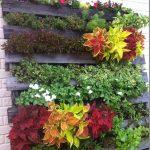 Añade un Jardín Vertical a tus Paredes con Mucho color y EstiloAñade un Jardín Vertical a tus Paredes con Mucho color y Estilo