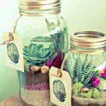 Ideas para decorar tu hogar con cactus miniatura (18)