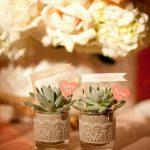 Ideas para decorar tu hogar con cactus miniatura (19)