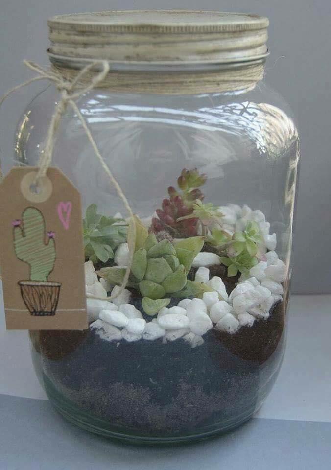 Ideas para decorar tu hogar con cactus miniatura for Ideas para decorar tu hogar