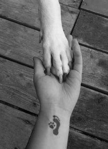 Ideas de Tatuajes sobre Mascotas (27)