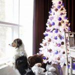 +de 25 ideas increibles ideas de Arboles de Navidad Blancos (10)