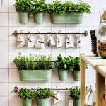 como renovar la cocina agregando plantas (5)