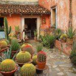 los mejores lugares magicos para visitar en mexico (14)
