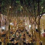 lugares para visitar en mexico (9)