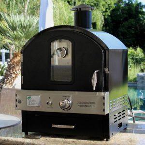 hornos de barbacoa de gas