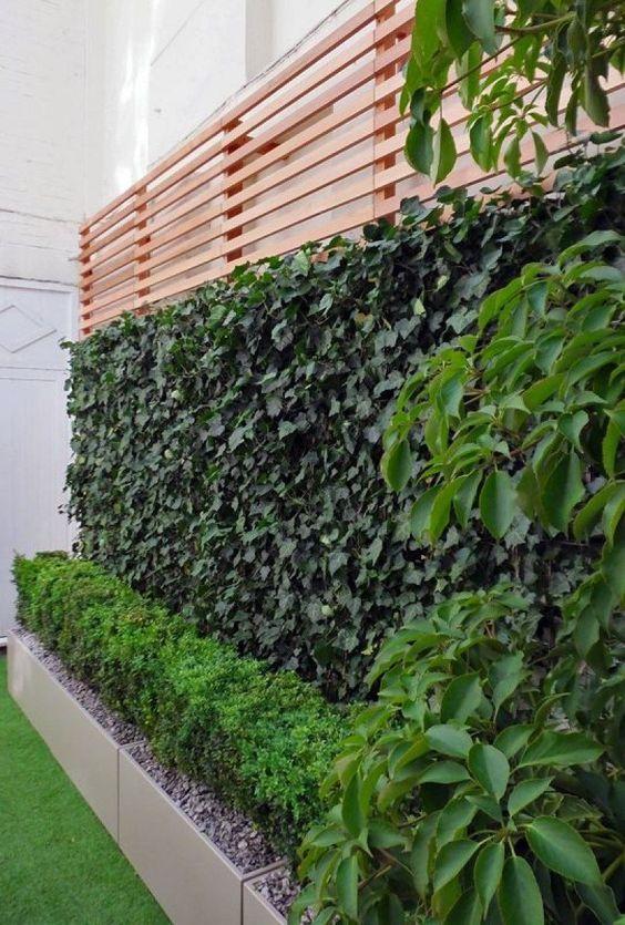 Jardines colgantes o verticales