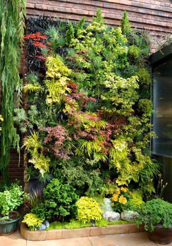 jardines colgantes o verticales (2)