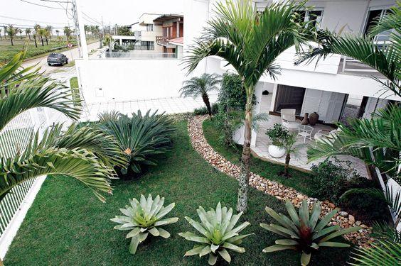 Tipos de plantas para diseñar tu jardín y paisajismo