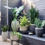 ideas para decorar un jardin sin mantenimiento