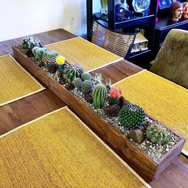 Centros de mesa con cactus