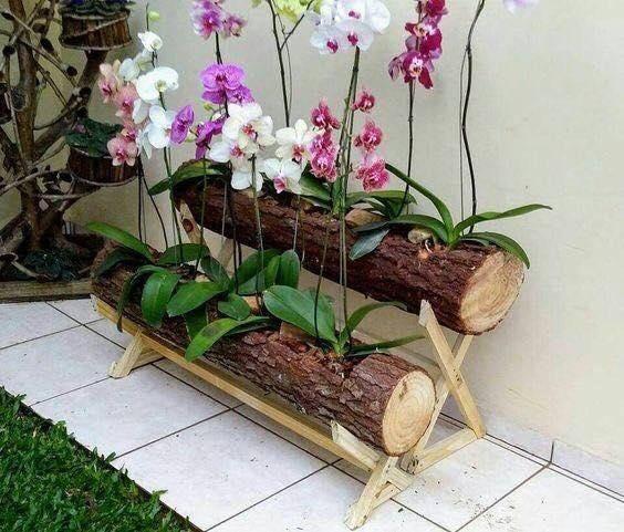Macetas de troncos de madera para decorar una casa