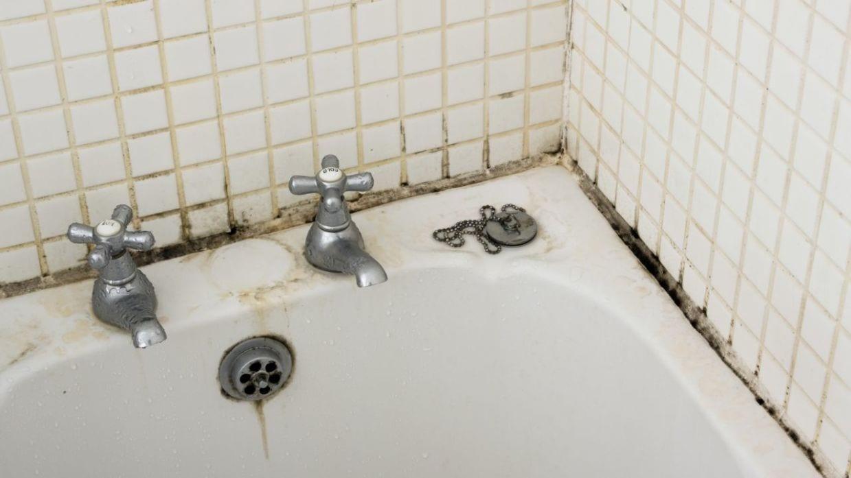 Consejos para eliminar moho de las paredes del baño