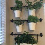 Colgar plantas aromáticas
