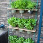Cómo crear un huerto aromático en exteriores
