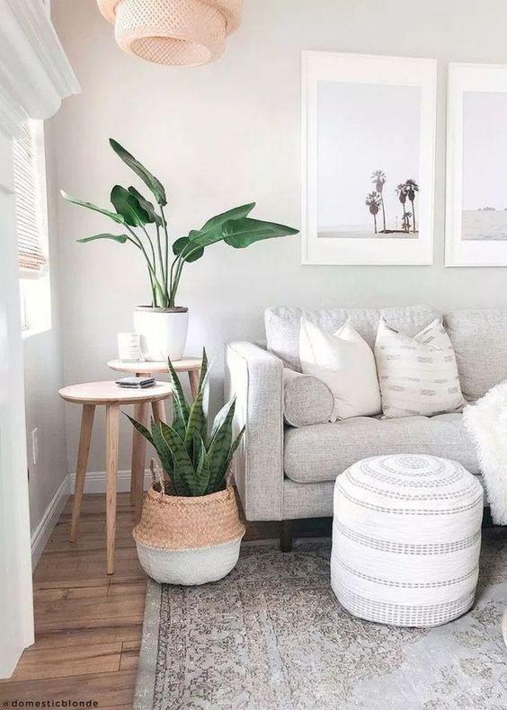 Decorar la sala con plantas