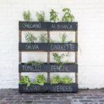 Huertos aromáticos en paredes de pizarra