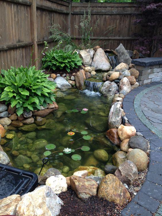 Jardín acuático
