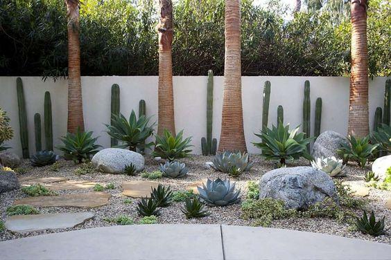 Jardín estilo desierto