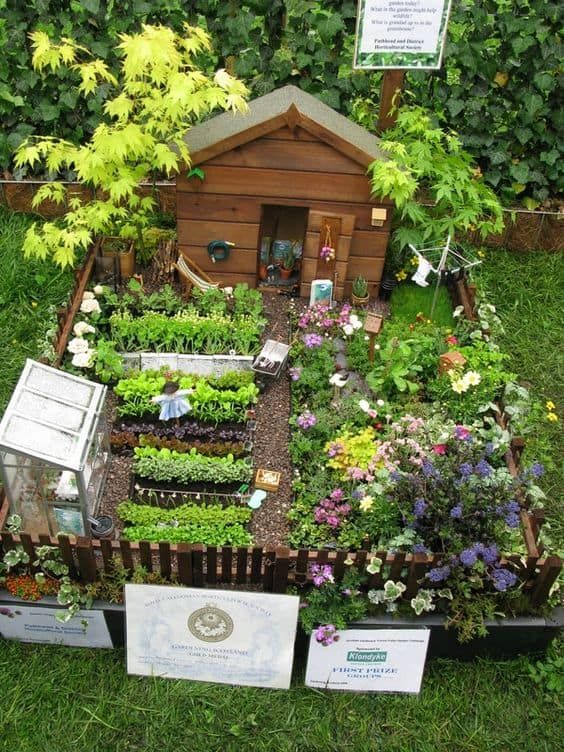 Diseño de jardín estilo taiga